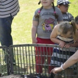 Petting Zoo At OWL Day Care